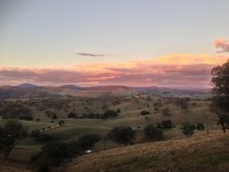 Adelong NSW Australia early April evening x