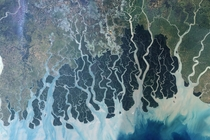 Aerial photo of the Sundarbans Delta in India by NASA
