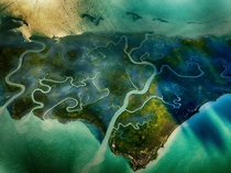 Aerial view of salt marshes in Hog Island Bay along the shore of Virginia photo by Gordon Campbell