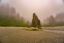 After a fully sunny day in Olympic NP the fog rolled in as I got to Ruby Beach making it look like Id always imagined the PNW is supposed to look OC x