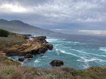 After a wave of rain when sun is out - Point Lobos CA