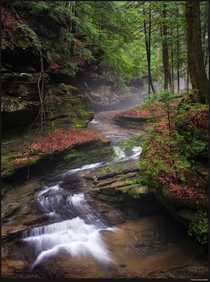 After overnight storms the gorges of Hocking Hills Ohio were full of water and mist