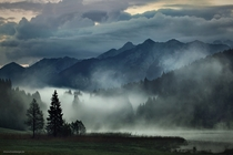 After The Rain - fog in the mountains of Bavaria Germany  photo by Kilian Schnberger