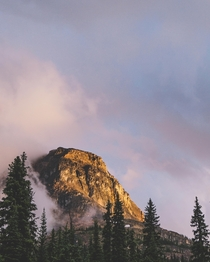 After the Rain in Yoho National Park