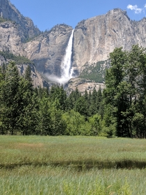 After  years Yosemite falls is absolutely gushing