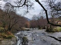 Aira Force near Lake Ullswater Lake District UK   x