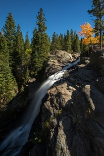 Alberta Falls Autumn - From my hike last Saturday in Rocky Mountain National Park Colorado USA