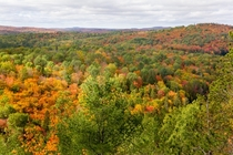 Algonquin Park during Fall Peak colours Canada