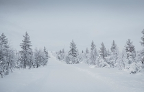 All the pretty colours posted in this sub are amazing but I think we also need Earth Porn devoid of colour too Heres a Winter Finnish landscape