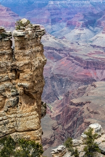 All the Way to the Bottom Grand Canyon AZ USA