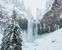 Almost Frozen - Tamanawas Falls Oregon