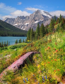 Along Lake Josephine Glacier National Park Montana
