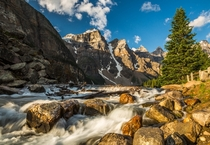 Along the Creek in Banff National Park Alberta by Christopher Martin