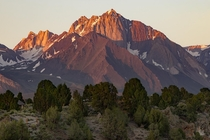 Alpenglow in the Eastern Sierras