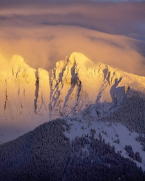 Alpenglow on Montanas Mission Mountains