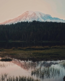Alpenglow on Mt Rainier Reflection Lake at Mt Rainier National Park