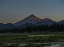 Alpenglow on Mt Shasta in Northern California