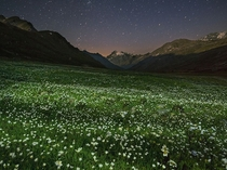 Alpine Oasis in Italys Gran Paradiso National Park by Stefano Unterthiner