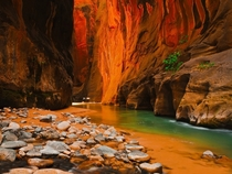Amazing shot from the Zion Canyon Utah