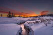Amazing Sunrise in Norway note the first animal tracks Photo by Jrn Allan Pedersen