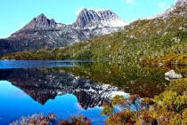 Amazing vegetation around Dove Lake Cradle Mountain-Lake St Clair National Park Tasmania AU