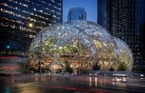 Amazon Spheres  NBBJ