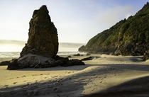 Amelia Sea Stack Baker Beach Oregon  x