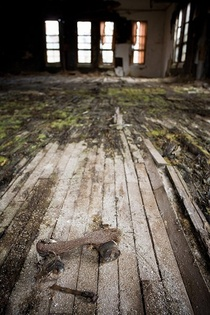 American Insane Asylums A roller skate found in Norwich State Hospital