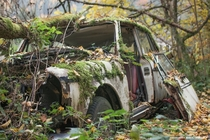 An abandoned car covered in moss  Photographed by Rocco del Anno