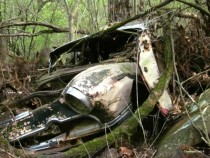 An Abandoned Car Found Off the Trail at a Nature Preserve Bloomington IN USA