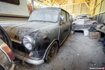 An abandoned mini amp other cars in a barn