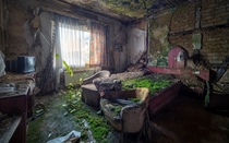 An abandoned moss-covered hotel room