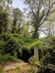 An abandoned overgrown home near Holly Springs Georgia What nature giveth she taketh back eventually