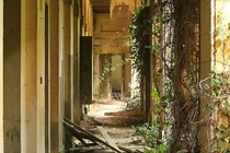 An abandoned psychiatric hospital in Poveglia Venetian Lagoon