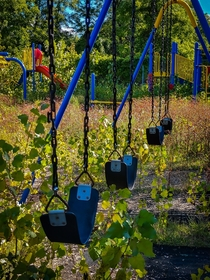 An abandoned swing set at a Detroit school