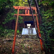 An abandoned Torii gate found in the Joganji Mountain Japan