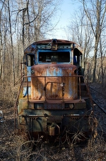An abandoned train  by Helena Bowman