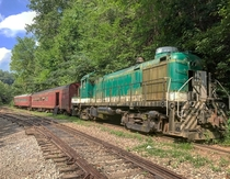 An abandoned train in the middle of the East Tennessee woods