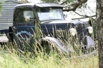An abandoned truck at a blueberry farm