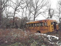 An abandoned vintage yellow school bus which now sits in the woods in Tennessee USA