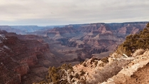 An afternoon stroll along the South Kaibab Trail at the Grand Canyon AZ  x