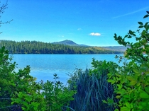 An amazing view I wanted to share Suttle Lake Deschutes National Park Oregon