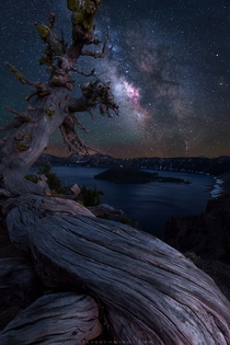 An ancient tree overlooks Crater Lake at night By far my favorite stop on a recent motorcyclecamping trip throughout Oregon