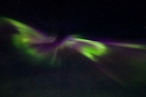 An aurora over Iceland like a bird in flight  Photographed by Jnna Gurn skarsdttir