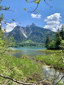 An encore to yesterdays snapshot at the beautiful Alpsee Bavaria  x