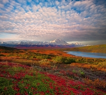 An Explosion Of Clouds Above Denali - Denali National Park Alaska Photo by Kevin McNeal