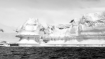 An iceburg in Antarctica