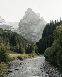 An iconic view wandering the the hills in the Bernese Oberland region Switzerland
