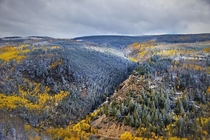 An interesting natural color pallet near Minturn CO