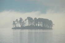 An Island Surrounded by Morning Fog in Lake Murray SC Taken from the shore of Dreher Island State Park -
